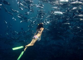 What_Is_Freediving_And_How_To_Do_it