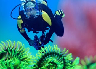 10_Best_Diving_Spots_In_Asia