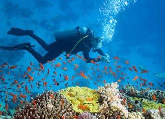 10_Best_Diving_Spots_In_Australia