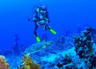 10_Best_Diving_Spots_In_California