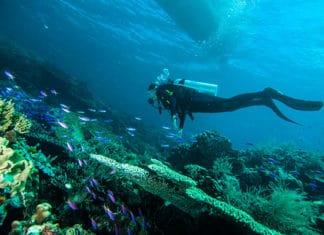 10_Best_Diving_Spots_In_Columbia