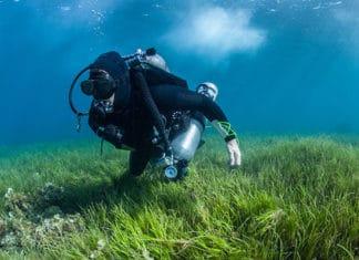 10_Best_Diving_Spots_In_Fiji