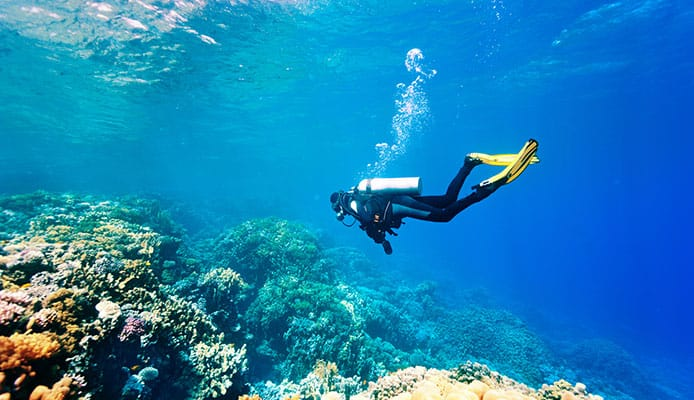 10_Best_Diving_Spots_In_Hawaii