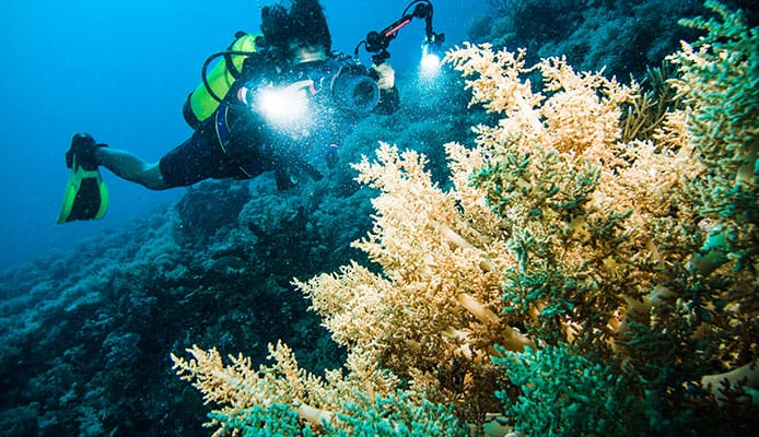 10_Best_Diving_Spots_In_Indonesia