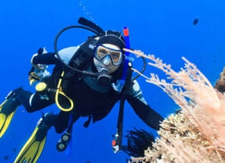 10_Best_Diving_Spots_In_Red_Sea,_Egypt