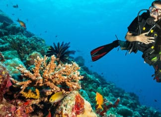10_Best_Diving_Spots_In_The_UK