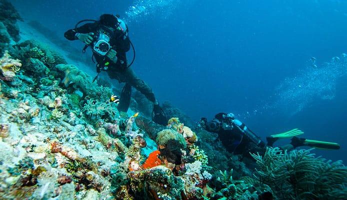Bali_Island,_West_Lombok