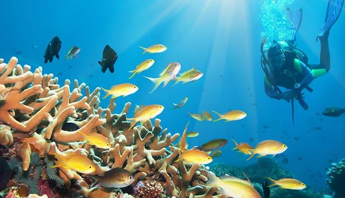 How_Deep_Can_You_Scuba_Dive