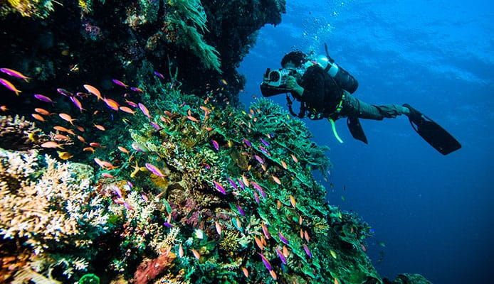 La_Caleta_National_Underwater_Park