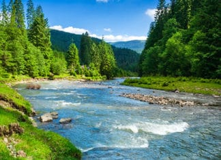 River_Velocity_Explained_How_Fast_Do_Rivers_Flow