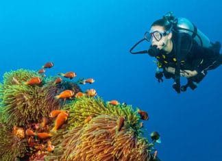Scuba_Diving_With_A_Cold