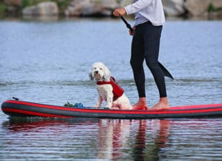 Winter_Paddling_Guide_How_To_Paddle_Board_In_Cold_Weather