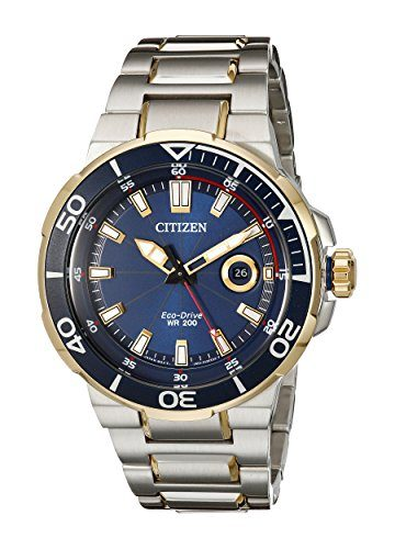 Citizen Eco-Drive Men's Endeavor Dive Watch Under $500