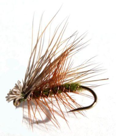 Flies Direct Elk Hare Caddis Olive Flies For Trout