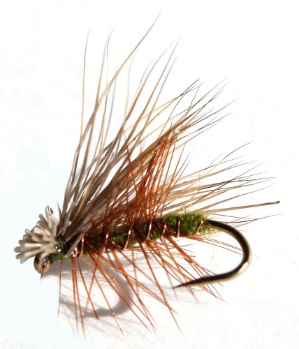 Flies Direct Elk Hare Caddis Olive Flies For Trout
