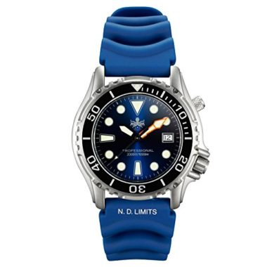 Phoibos PX002C 300M Swiss Quartz Dive Watch Under $200