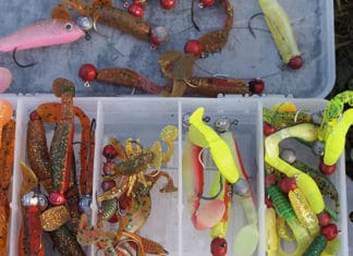 Setup_Guide_For_Texas_Rig_For_Worms_Lures