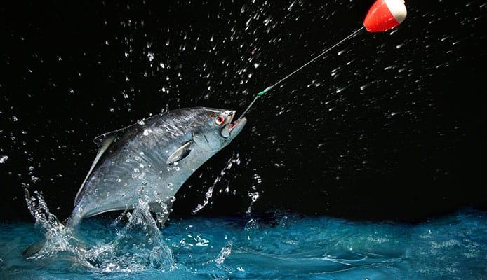 Tips_and_Tricks_for_Slip_Bobber_Fishing