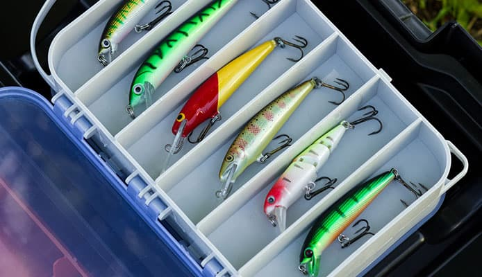 What_Is_The_Difference_Between_A_Freshwater_And_Saltwater_Lures