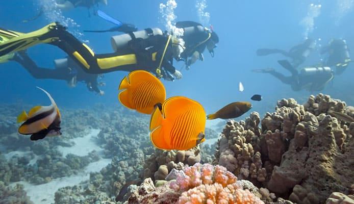 10_Best_Budget_Dive_Sites