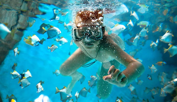 10_Best_Dive_Sites_In_Canary_Islands
