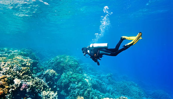 10_Best_Dive_Sites_In_India