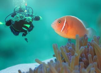 10_Best_Sites_For_Macro_Diving