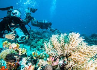 10_Best_Sites_For_Underwater_Photography