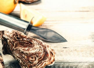 Best_Oyster_Knives