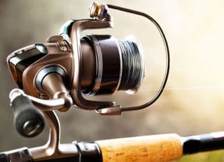 Best_Shimano_Spinning_Reels
