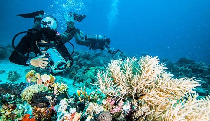 Compact_Camera_Underwater_Photo_Tips