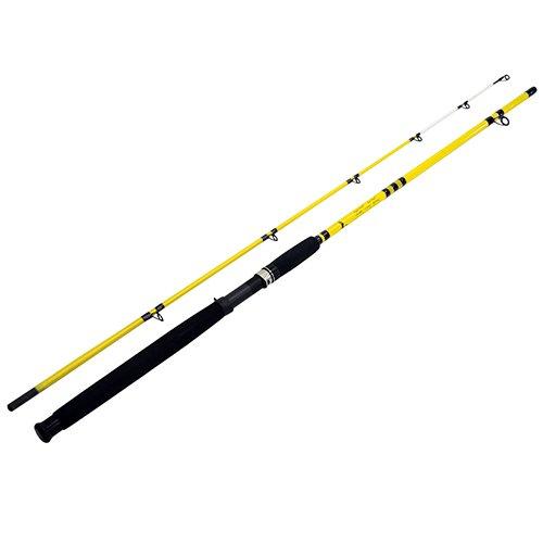 Eagle Claw Catfish Rod