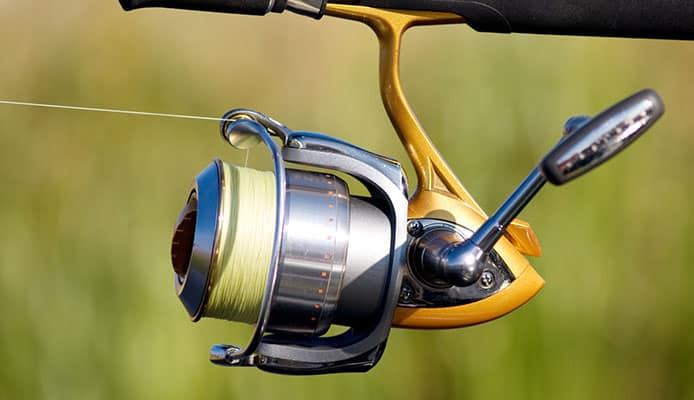 How_To_Choose_A_Spinning_Reel_Under_$50