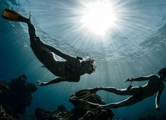 How_To_Find_A_Freediving_Buddy