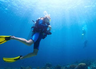 How_To_Get_The_Padi_Freediver_Certification