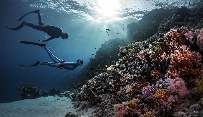 Modern_Freediving_Pioneers