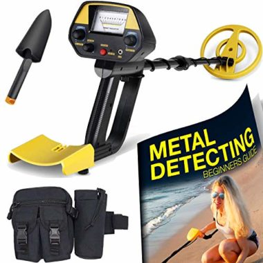 Ultimate Beach Metal Detector