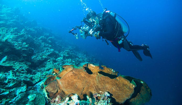Underwater_Photography_Tips_Photography_Guide