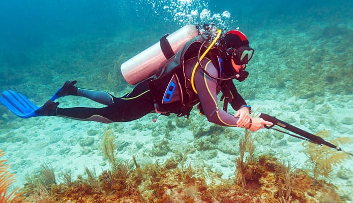 What_Is_Spearfishing