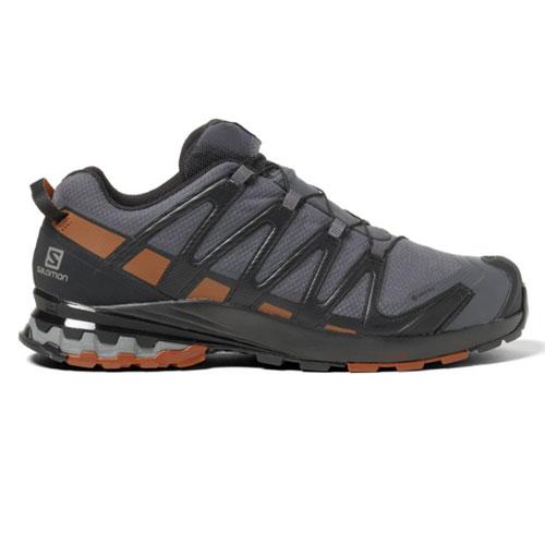 Salomon XA Pro 3D V8 GTX Winter Running Shoes