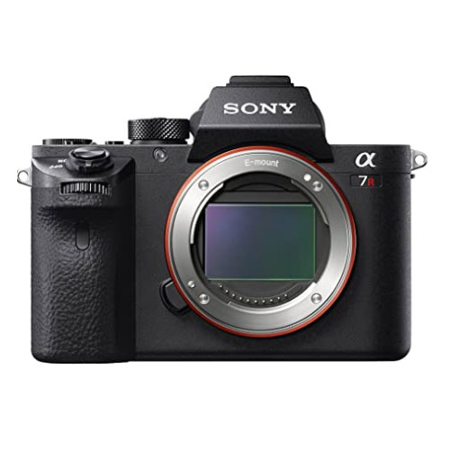 Sony a7R II Camera For Skiing