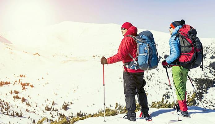 Best_Snowshoe_Poles