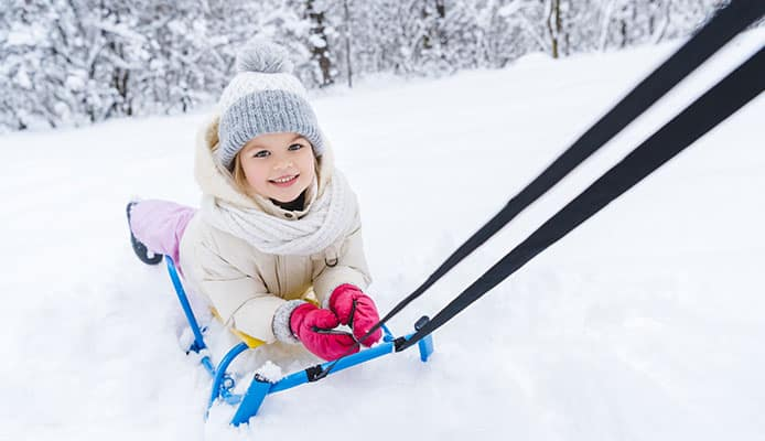 How_To_Choose_Snow_Sleds