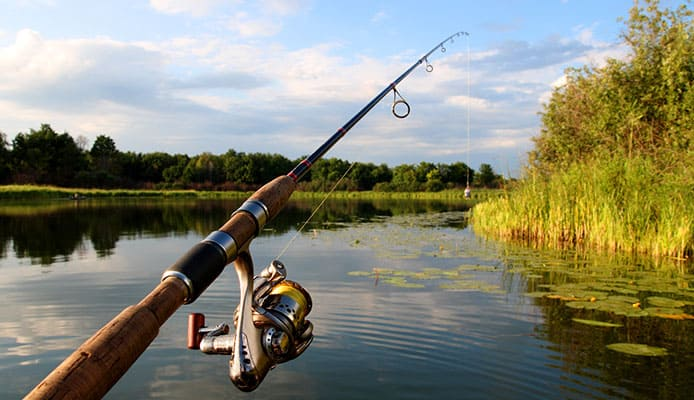 What_Is_The_Difference_Between_Catfish_Rods_And_Catfish_Poles