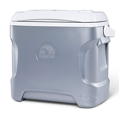 Igloo 12 Volt Cooler