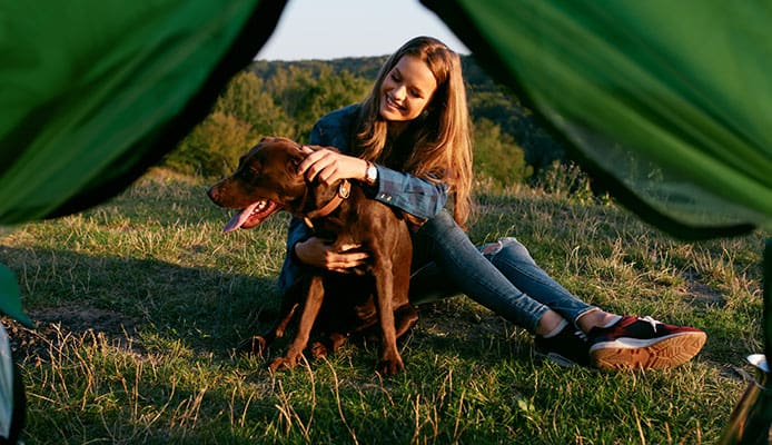 Tips_to_Help_You_Have_a_Good_Time_Camping_with_Your_Dog