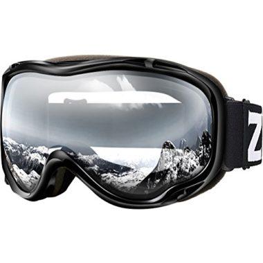 Zionor Lagopus OTG Ski Goggles