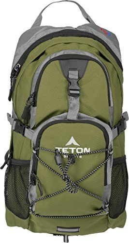 Teton Oasis Day Hiking Backpack Under $100