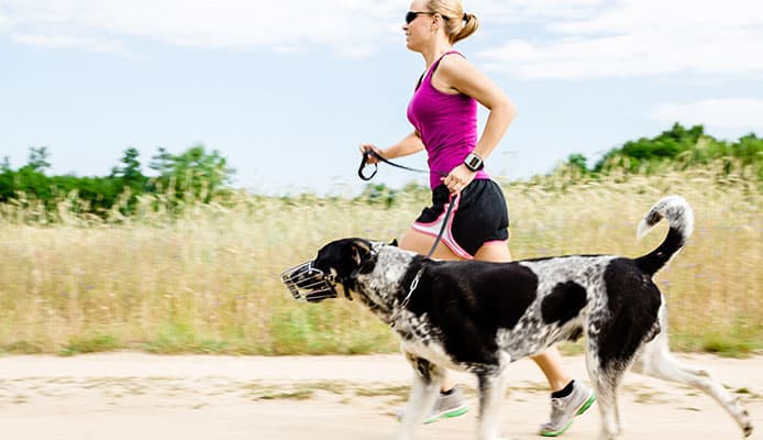 Trail_Running_With_A_Dog_Here_Is_How_To_Go_Running_With_Your_Dog