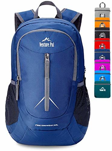 Venture Pal Small Packable Budget Hiking Backpack